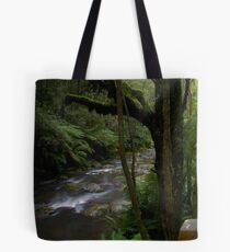 Triplet Falls River Tote Bag