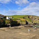 Port Isaac pt4 by Lisa Williams