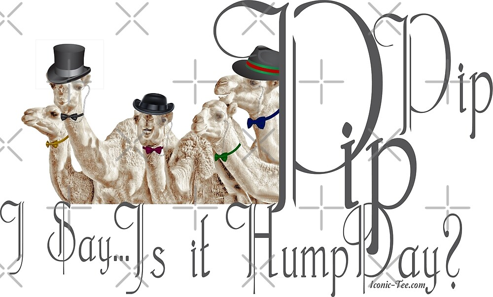Brit Humour PipPip Gentlemen Camels  HumpDay  by IconicTee