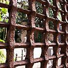 Iron Curtain by barkeypf