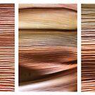 Macro Palm Tree Triptych by Kathie Nichols