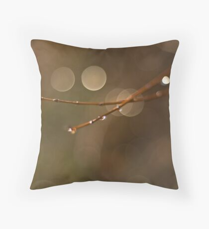 Sun glints Throw Pillow