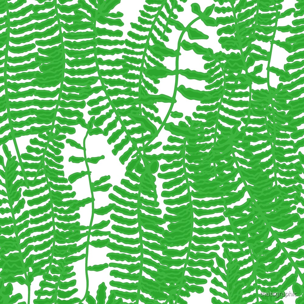 Tropical Frilly leafed sword fern by thatsgraphic