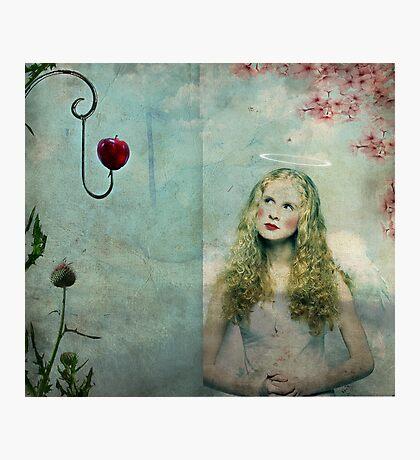 Temptation... Photographic Print