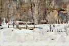Winter's bridge by PhotosByHealy