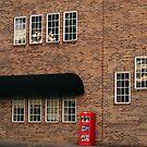 Eighteen Windows by rainyjane