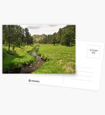 French Creek - Custer State Park Postcards