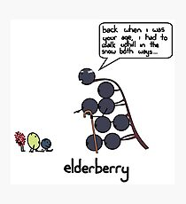 elderberry Photographic Print