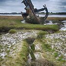 Boat remains by PeteS