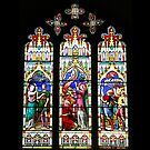 Cathedral Stained Glass 3 by GuyBlank