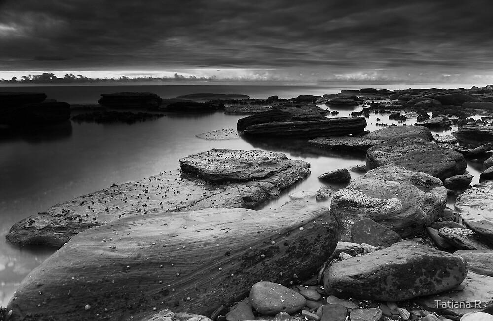 Air, Water, Rock I by Tatiana R