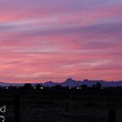 Sutter Buttes and Pink Sunset by Bryan W. Cole