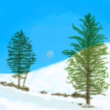 Wintery trees by thebigG2005