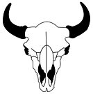Bison bison by Sun Dog Montana