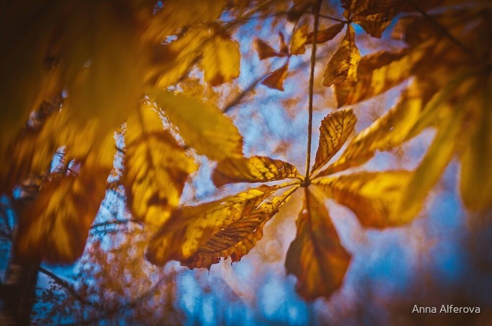 Fall in Moscow by Anna Alferova