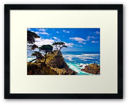 Monterey Lone Cypress by photosbyflood