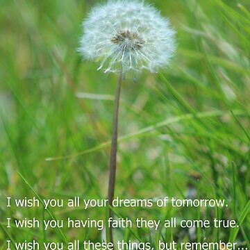 I Wish...Dandelion by anitahiltz