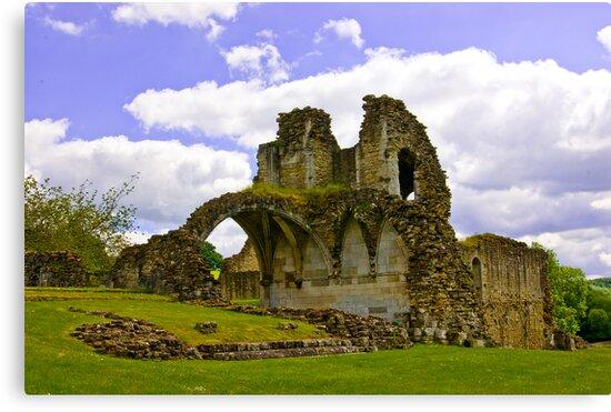 Kirkham Abbey Ruins #3 by Trevor Kersley