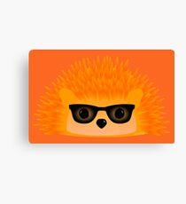 Sedgewick Rocking Orange Orbison Canvas Print