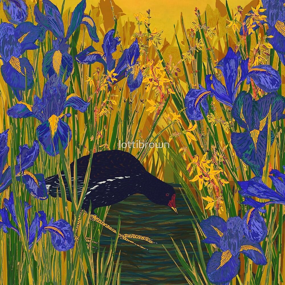Iris and Moorhen by lottibrown