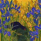 Iris and Moorhen by lottibrown