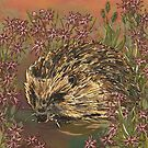 Sweet Ragged-Robin Hedgehog by lottibrown