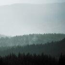 Mist in the Scottish Highlands by Patrice Mestari