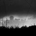 Storm chaser by William Sanford