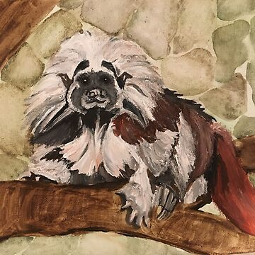 Tamarin by EmilyPaints