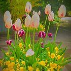 Spring Planting by Viv Thompson