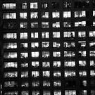 windows by sonjas