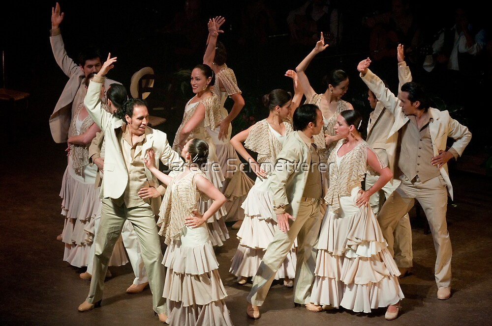Flamenco Dance Troupe by Jarede Schmetterer