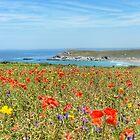 """ Summer Meadow Coast "" by Richard Couchman"