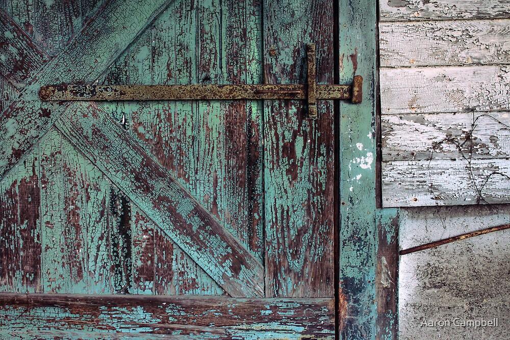 Weathered Green Door by Aaron Campbell