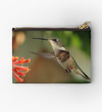 Hummingbirds and Honeysuckles Studio Pouch