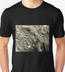 Water Dragon, (Detail), Chinese Gardens, Sydney, Australia. T-Shirt