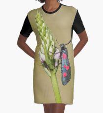 cdb474ee659 Five Spot Burnett Moth Graphic T-Shirt Dress