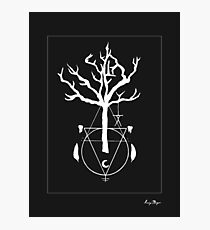 A Witch Tree Photographic Print