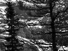 Jungfrau by John Douglas