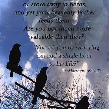 Matthew 6:26-27 by DwCCreations