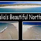 Australia's North West by Sheldon Pettit
