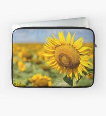 Sunflower Fields - Nobby, Australia   Laptop Sleeve