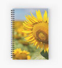 Sunflower Fields - Nobby, Australia   Spiral Notebook
