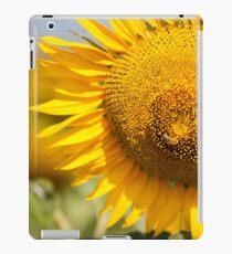 Busy Bee on Sunflower - Nobby, Australia iPad Case/Skin