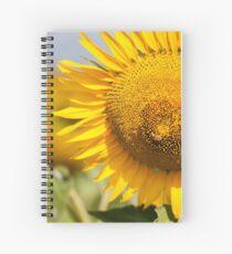 Busy Bee on Sunflower - Nobby, Australia Spiral Notebook