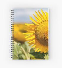 Sunflower - Nobby, Australia Spiral Notebook