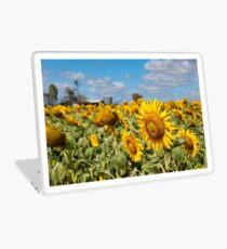 Sunflower Fields - Nobby, Australia   Laptop Skin