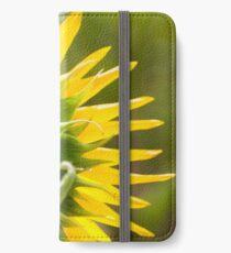 Close up of Sunflower Back - Nobby, Australia iPhone Wallet/Case/Skin