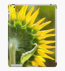 Close up of Sunflower Back - Nobby, Australia iPad Case/Skin