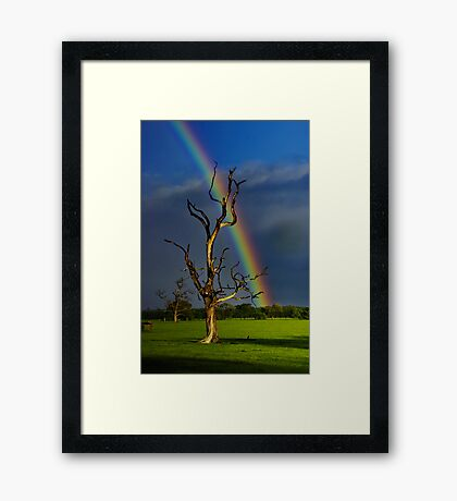 """""""Testament To The Covenant"""" Framed Print"""